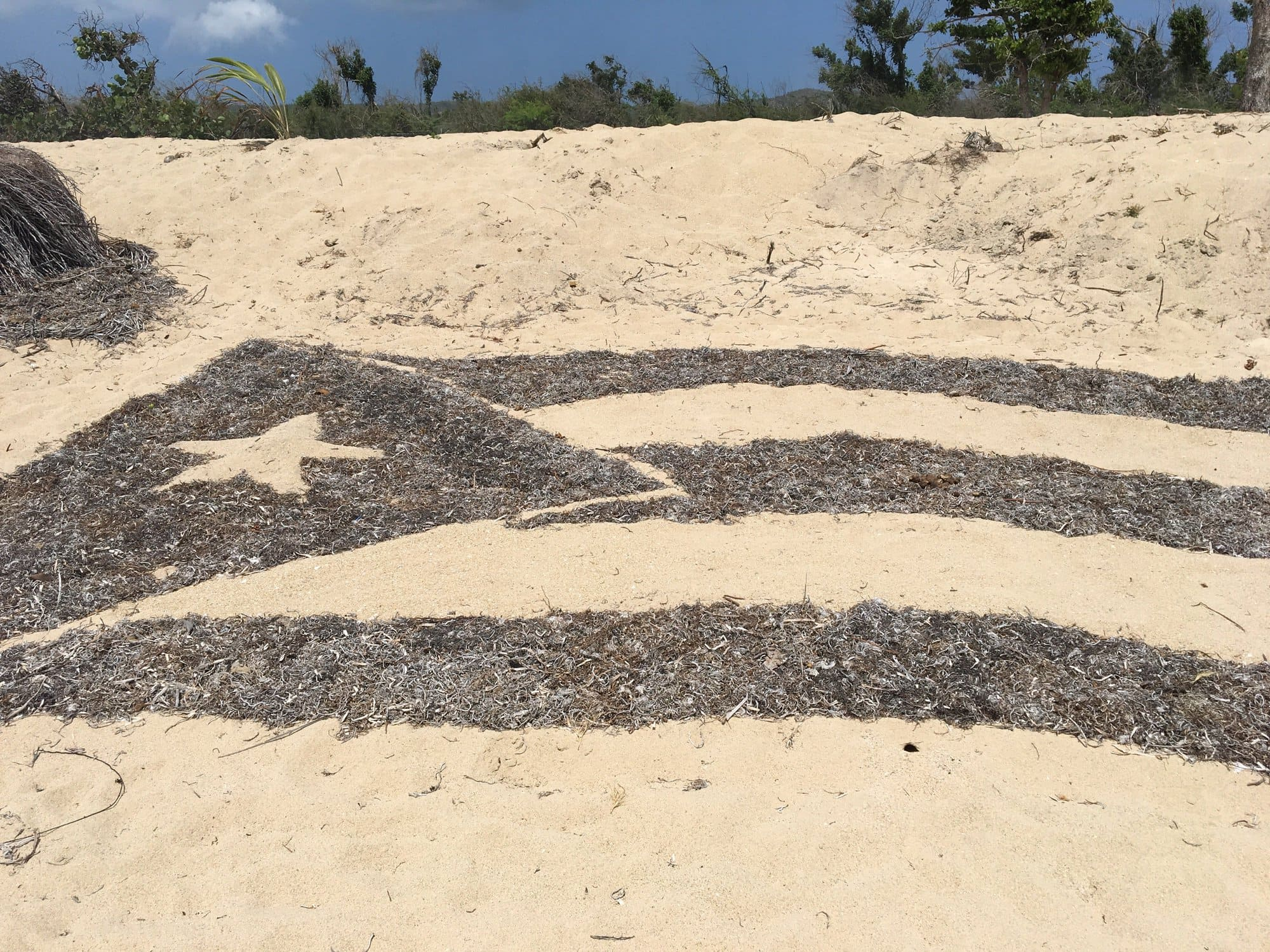 Puerto Rico flag in the sand, made from seaweed