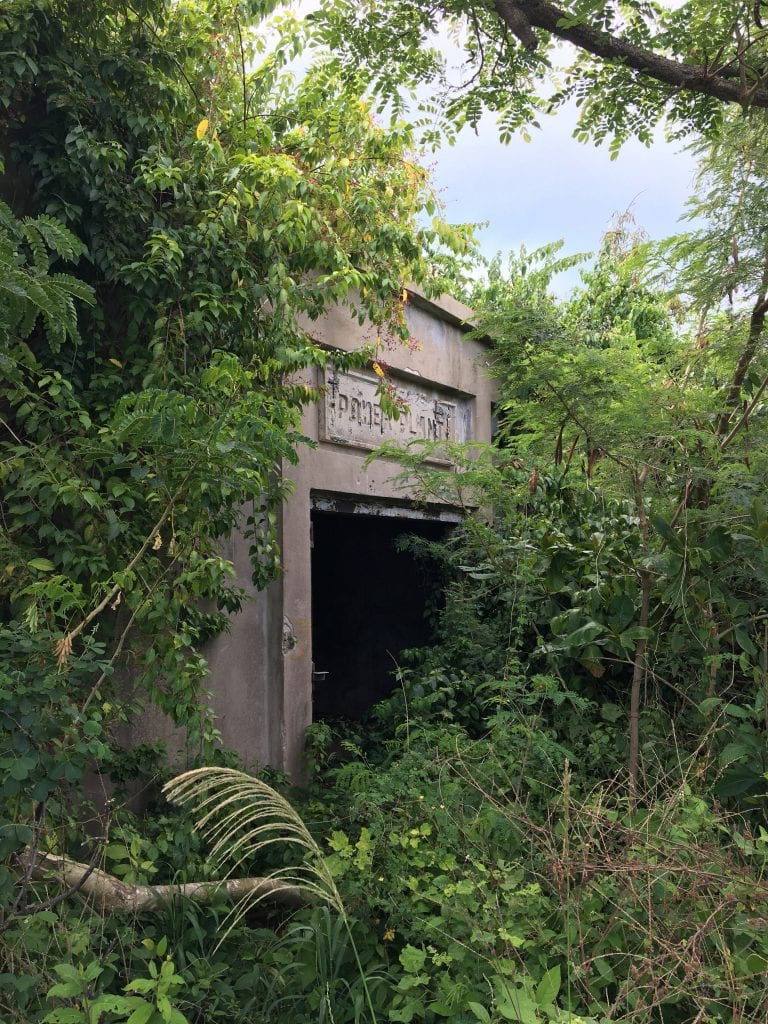 Decaying Power Plant building in the jungle