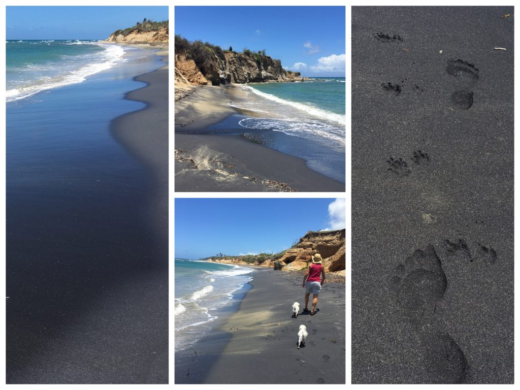 Collage of black sand and blue water.