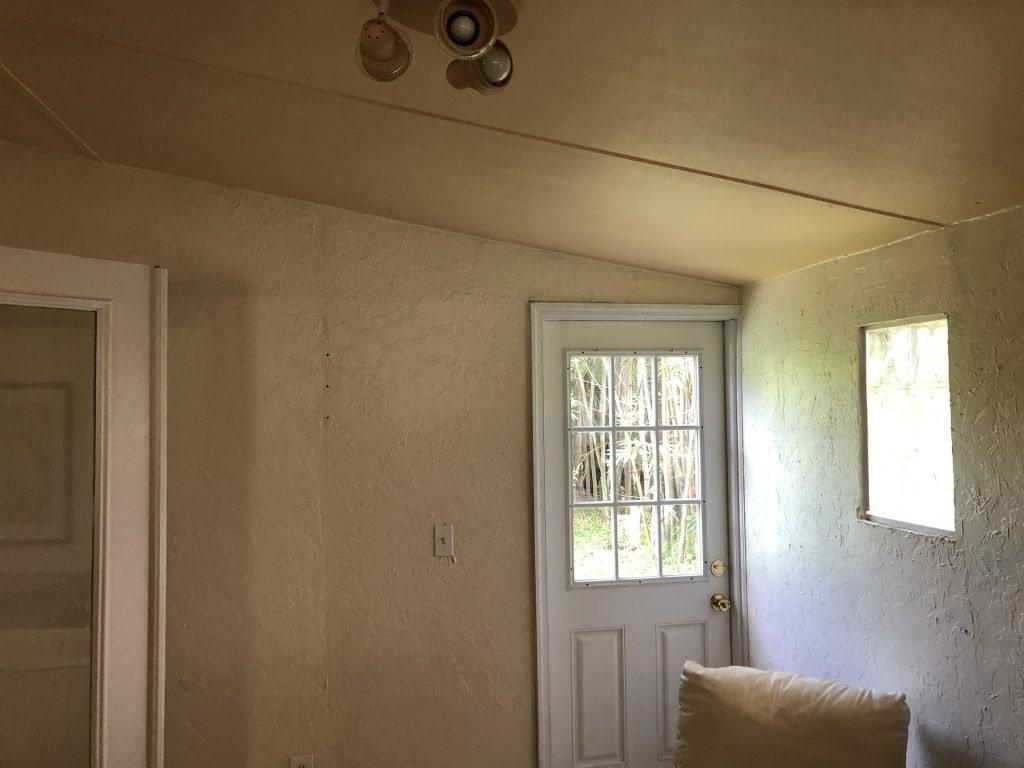 Small back door